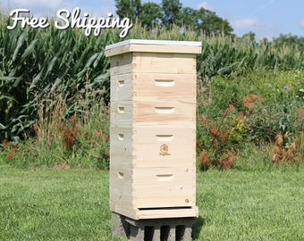 Bee Hive 10 Frame Langstroth - (2) Deep Brood Boxes & (3) Medium Super Boxes includes Frames / Foundations