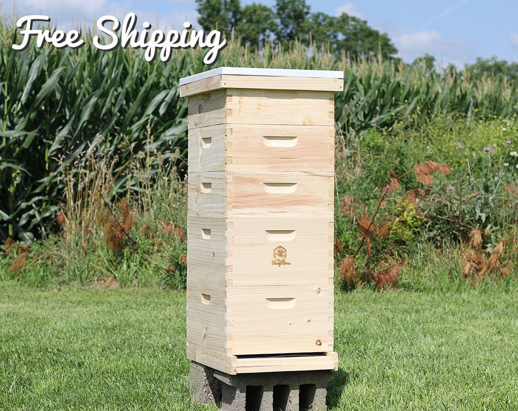 Bee Hive 10 Frame Langstroth 2 Deep Brood Boxes Amp 3