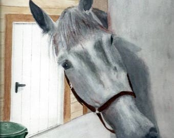 Curious young horse, original watercolor in shades of gray and white