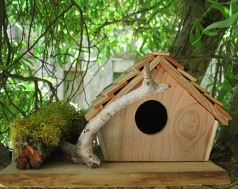 Birdhouse With Branch and Moss