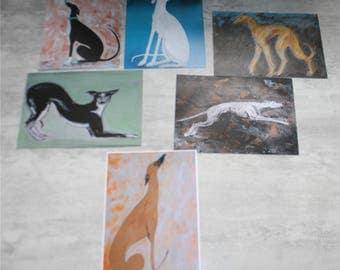 cards postcards greyhounds