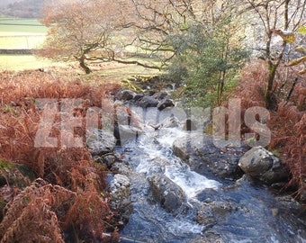 welsh stream