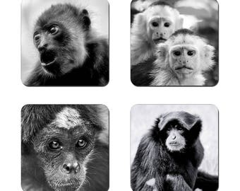 Set of 4 Black and White drinks coasters featuring award winning photography by UniquePhotoArts.