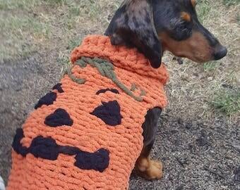 Dog knit pumpkin sweater halloween