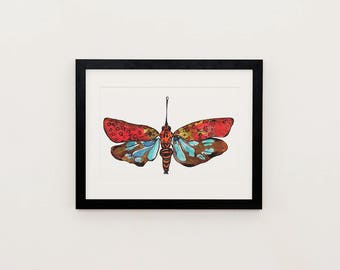 Lanternfly illustration print