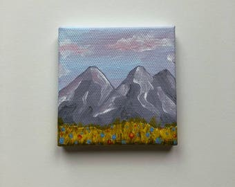 Tiny Mountain and Wildflower Field