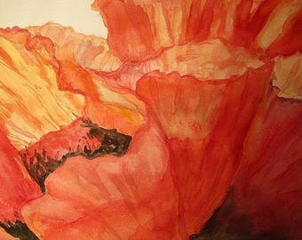Watercolor painting, painting, close-up poppies (original signed, dated). Red.