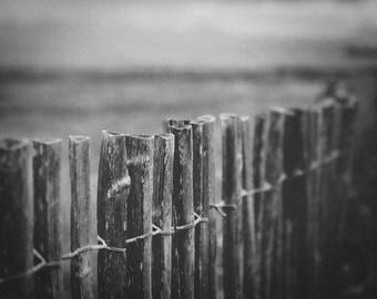 Photography barrier beach wood