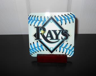 Tampa Bay Rays Coaster