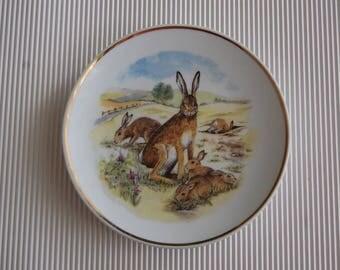 6 plates- Wildlife of Britain decorative plates