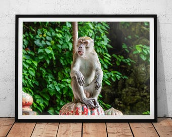 Monkey Photo // Asia Wildlife Photography, Malaysia Monkey Print, Batu Caves Wall Art, Animal Home Decor, Funny Jungle Mammal Picture