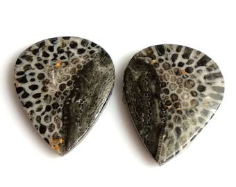 Black Coral Pear Pair Cabochon,Size- 22x18, MM, Natural Black Coral, AAA,Quality  Loose Gemstone, Smooth Cabochons.