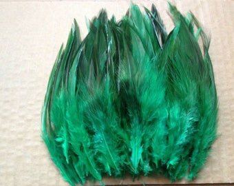 1 green rooster feather