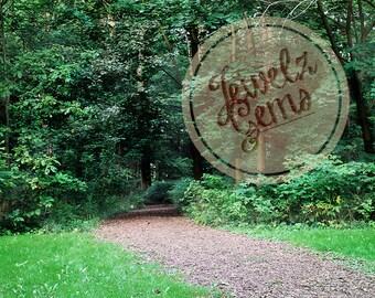 Green Forest Path Digital Backdrop, Green Forest Path Digital Background, Summer Forest Background, Summer Forest Backdrop, Lush Forest