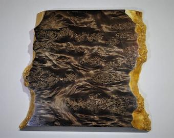 Live edge maple burl wall art,wood wall art,modern nature art, home decor,wood wall sculpture,birthday gift,wood picture,live edge woodslab.