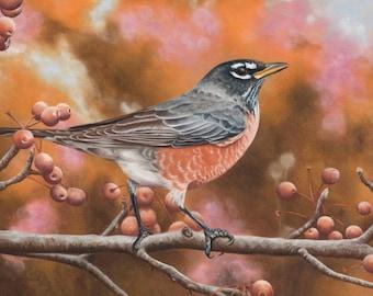 American Robin/Fine Art Limited Edition Print/Pastel Drawing/Signed Prints/Wall Decor/Bird Illustration/Wall Art/Animal Print/Nature/Giclee