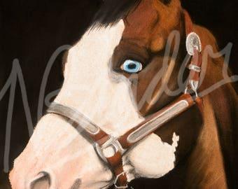 Piebald | pinto | paint| Horse head