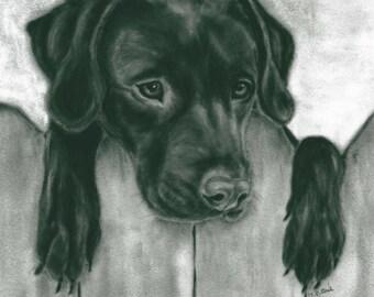 Black Labrador Wall Art - Dog Gift - Monotone Labrador Print - Labrador Print -  Dog Print - Labrador Picture - Dog Picture - Dog Wall Art