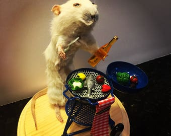 Taxidermy rat - BBQ and beer