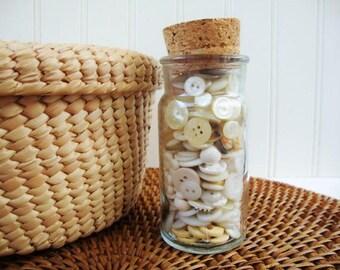 vintage button lot bone, cream, white, sewing dressmaker suppy