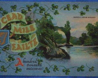 Gaelic Cead Mile Failte Cromwell's Bridge Glengariff Ireland Postcard Embossed Postmarked 1913