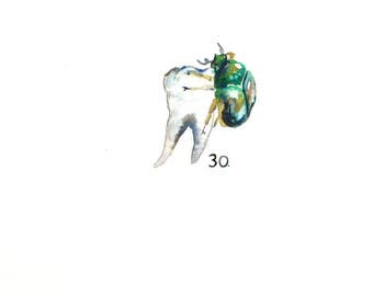 "Watercolor Molar with June Bug, Dark Art, Anatomical Art, Dentist Art, Tiny Painting 11""x15"""