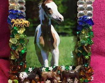 WILD HORSES: