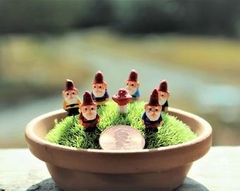 Gnome Miniature Gnomes Yoga Girl Teeny Tiny Garden Gnome Wee Fairy Garden