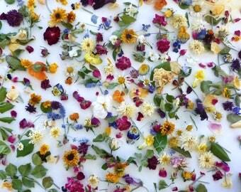 Dry Flowers, Wedding Confetti, Flower Girl, Flower Petals, Biodegradable, Centerpieces, Flower Girl Basket, Aisle Decorations, 40 Boxes