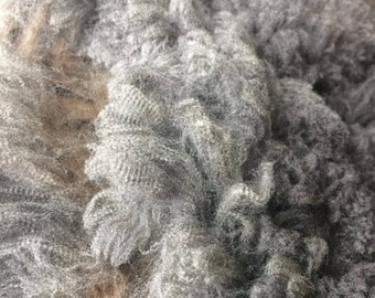 Raw Fleece, CVM/Rambouillet cross - Petunia - REDUCED PRICE