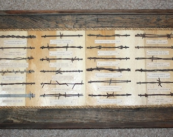 Antique Barbed Wire Collection Bobbed Wire Barb Wire Display Authentic 1800's 24 Cuts Barnwood Framed