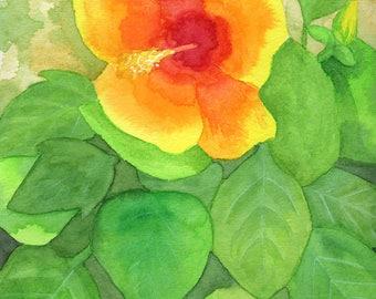 Yellow Hibiscus Print from Original Watercolor