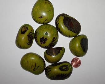 8 Green, Tagua Nut Slices, Top Slices, NOT DRILLED, Organic Beads, Natural Beads, Vegetable Ivory Beads, EcoBeads 17