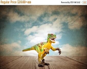FLASH SALE til MIDNIGHT Flash Sale til Midnight Velociraptor  Dinosaur, Photo Print, Boys Room Decor, Dinosaur Art, Dinosaur photos, Boys Ro