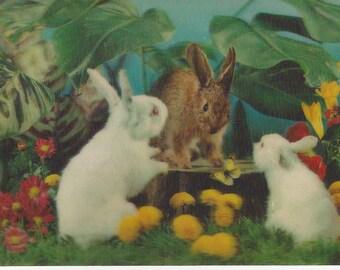 Vintage Toppan Wonder Co. Ltd. Lenticular (3D) Bunny Rabbits Postcard, 1970s