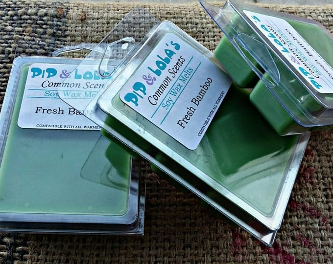 Fresh Bamboo Wax Melt - Pip & Lola's Common Scents - Soy Candle Wax, Wax Tarts, Wax Melt, Soy Wax, Clamshell Melts, Candle melt, Wax warmer
