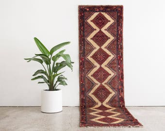 ARJAN 3x10 Hand Knotted Persian Wool Rug
