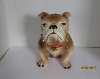 Air Brush Bulldog Light Brown and White Cookie Jar