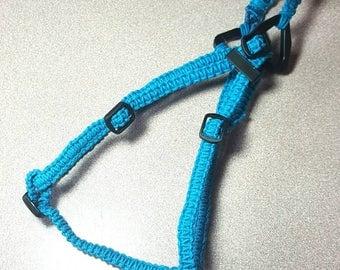 Cat Harness, Walking Pet Harness, Hemp Harness, Custom Colors, Small Dog Harness, Handmade Pet Harness