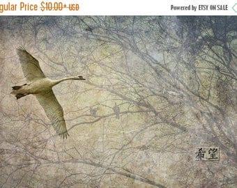 On Sale Hope, Japanese-Inspired Photo Art, Photo Collage
