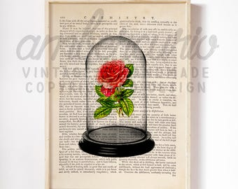 Magic Rose Petals Bell Jar Original Beauty and the Beast Inspired Art Print on a Unique Unframed Upcycled Bookpage