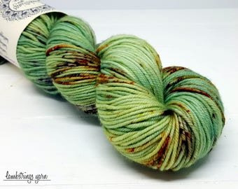 Ewetopia DK, Hand dyed yarn, Superwash Merino Wool, 231 yds/ 100g: Garden Gate.