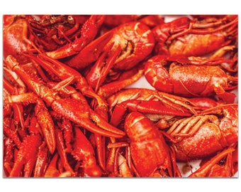 Coastal Wall Art 'Crawfish Supper' by Meirav Levy - Crayfish Boil Decor Southern Crawdad Decor on Metal or Plexiglass