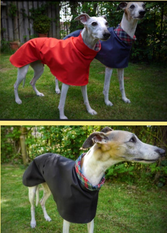 Whippet and Greyhound cotton lined summer raincoats.