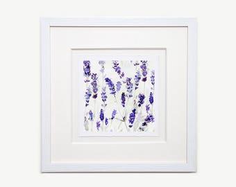 Lavender Watercolour Framed Glicée Print 03