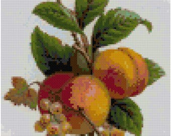 Vintage Peaches Drawing Cross Stitch Pattern, Digital Download PDF