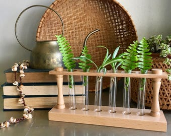 vintage test tube vases with stand propagation boho