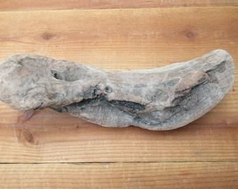 """Wavy, Sculptural, Pinkish Driftwood Piece-12""""X4""""X3"""""""