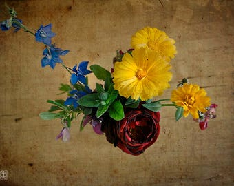 Spring Flowers, Fine Art  Photography, still life, deep yellow, blue, dark red, sepia, vintage style, wall art