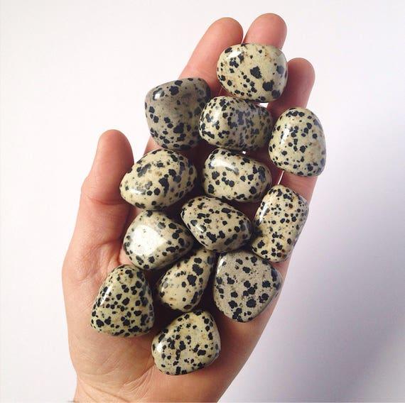 Dalmation Jasper tumble stone